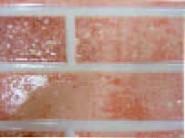 ピュアライド UVプロテクトクリヤー